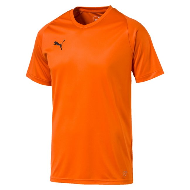 PUMA LIGA Jersey Core men T-Shirt, Colour: gold, Material: polyester