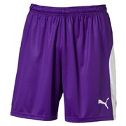 PUMA LIGA Shorts maends shorts