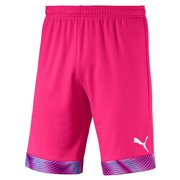 PUMA CUP Shorts maends shorts