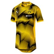 PUMA BVB Stadium Graphic Jersey maends t-shirt