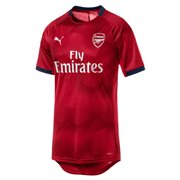 PUMA AFC Graphic Jersey maends t-shirt