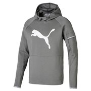 PUMA Tec Sports Cat Hoody sweatshirt