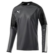 PUMA CUP Training RainTop sweatshirt
