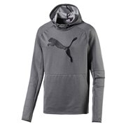 PUMA Tec Sports Cat men hooded sweatshirt