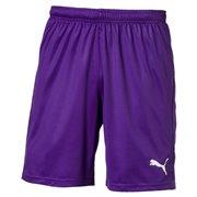 PUMA Liga Core Shorts