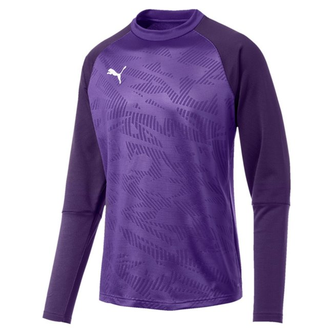 PUMA CUP Training Core sweatshirt, Color: Purple, Material: N / A