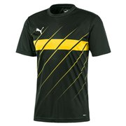PUMA Ftblplay Graphic Shirt T-Shirt