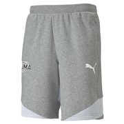 PUMA Modern Sports Tr Shorts