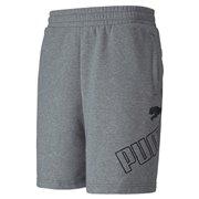 PUMA BIG LOGO Shorts 9
