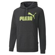 PUMA Essentials+ Fleece Hoody