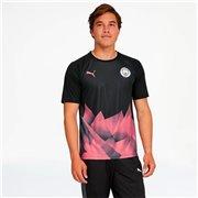 Manchester City Mcfc Stadium Int Jersey Ss Men T-Shirt